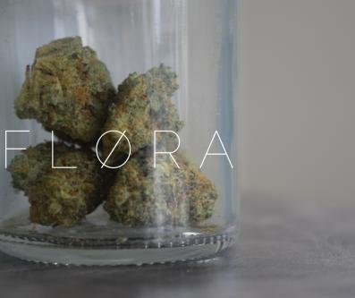 FLORA3
