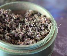 HEADY2(SM)